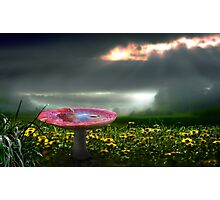 Meadow Sunset Photographic Print