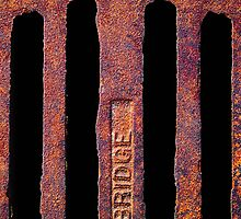 Just Grate! by Robert Meyer