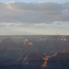 Flight  of the Condor - Grand Canyon by Barbara Burkhardt