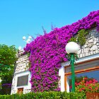 Flowers growing on a Building by fizzyart