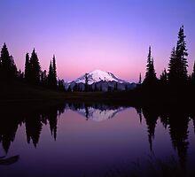 Mt. Rainier by Mike Norton