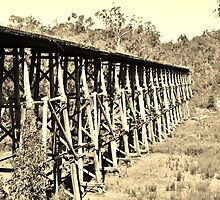 Old Trestle Bridge. by Emily  Redfern