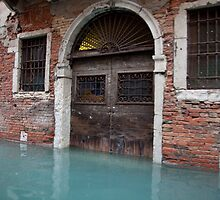 Submerged Doorway- Venice by Nathan Seiler
