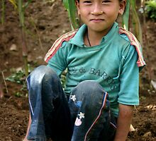 young girl working in the corn fields, Everest foothills by leannepapas