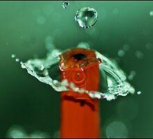 Pencil Drops by Willem van Velzen