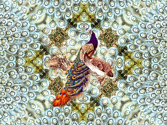 Peacocks and Feathers by LjMaxx