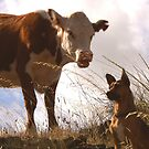 """""""Did you just call me steak on the hoof?!"""" by TheMobFanClub"""