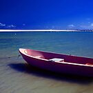 The Pink Boat by Eve Parry