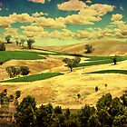Southern Highlands by Sonia de Macedo-Stewart