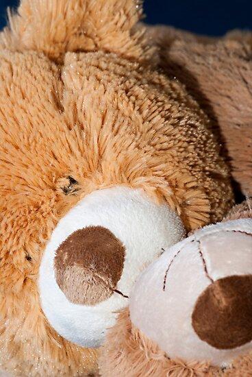 Snuggle Bear Faces by Doug Greenwald