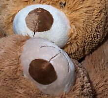 Face to Face Snuggle Bears by Doug Greenwald