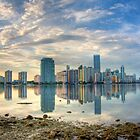 City of Miami by njordphoto
