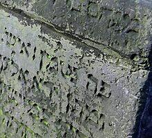 Old jewish graveyard stone by Peter Voerman