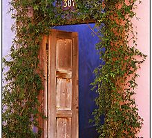 Wooden Door by Terry Temple