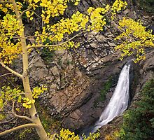 Yellow Forest Waterfall by Mike Norton