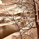 Mood Of Winter by Deborah  Benoit