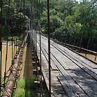 Hanging bridge Take 2 by Guy Tschiderer