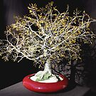 Yellow Oak, wire tree sculpture by Sal Villano