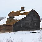 Lonely Prairie Barn   by Leslie van de Ligt