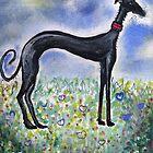 Greyhound in Field by Mark Dobson