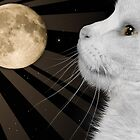 The Cat with the Moon and Stars in His Eyes by Sally Green