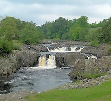Low force,Co Durham. by LINDA MARONEY