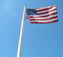 Waving American Flag by spottedmagpie