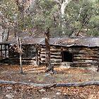 Little House on The Desert - Hereford, Arizona by Kimberly Miller