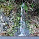 Roadside Waterfall by Sheri Scherbarth