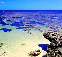 Abrolhos Islands by Kerryn Benbow