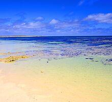 Abrolhos Islands 2 by Kerryn Benbow