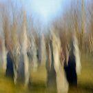 Souls Emerging by Lynn Wiles