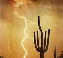 Arizona Saguaro Lightning Storm Poster Print by Bo Insogna