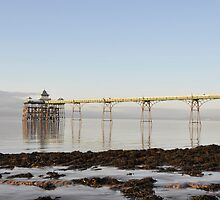 The Pier at Clevedon , Near ,Bristol , U.K. by Alex Hardie