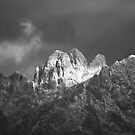 The Top of The Organ Mountains in Winter by David DeWitt
