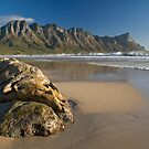 Kogelbay Beach by Peter Wickham