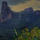 Grand High Tops in the Warrumbungles 003 by pedroski