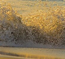 gold rush by felicityp