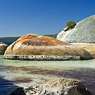 Two Peoples Bay, WA by Karen Stackpole