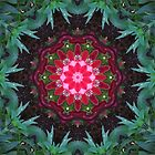Flower and leaf mandala  by medley