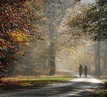 Biking in an autumnal paradise by jchanders
