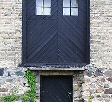 POLITICALLY CORRECT DOOR OPTIONS by David Piszczek
