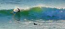 ericeira surfer by terezadelpilar~ art & architecture