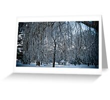 Under The Frosted Willow Greeting Card
