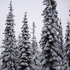 Snow Pillars by Mikhail Lenitsyn