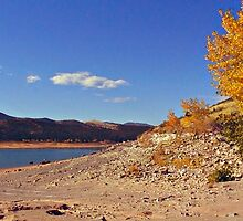 Sands of Autumn by Barb Miller