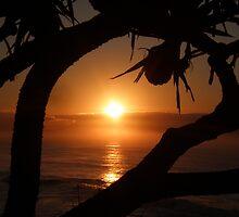 Corindi Beach 2nd August 09 by Sue Wetherell