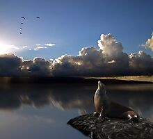 396 by peter holme III