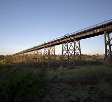 Rail bridge at dusk, Maribyrnong valley by MDC DiGi PiCS