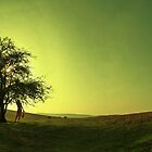 Green Sunset by Xander Ashwell
